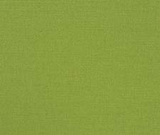 FDG2255/30 Manzoni – Grass – Designers Guild Fabric