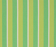 FDG2264/03 Brera Striscia – Grass – Designers Guild Fabric