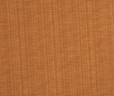 0769304 01528 – Russet – Trend Fabric