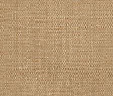 5057103 Thatch – Leather – Fabricut Fabric