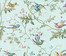 100/14069.CS Hummingbirds – Blue Multi-Colour – Cole & Son Wallpaper