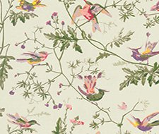 100/14070.CS Hummingbirds – Green Multi-Colour – Cole & Son Wallpaper