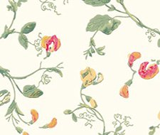 100/6027.CS Sweet Pea – Pink & Yellow – Cole & Son Wallpaper