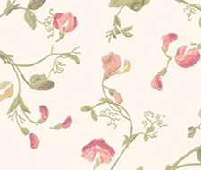 100/6028.CS Sweet Pea – Pink – Cole & Son Wallpaper