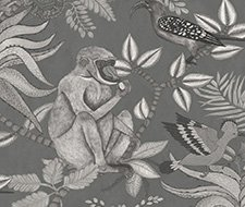109/1002.CS Savuti – Charcoal – Cole & Son Wallcovering