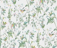 112/4015.CS Hummingbirds – Green/Pink – Cole & Son Wallpaper