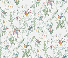 112/4016.CS Hummingbirds – Pastel – Cole & Son Wallpaper