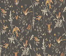 112/4017.CS Hummingbirds – Charcoal/Ginger – Cole & Son Wallpaper