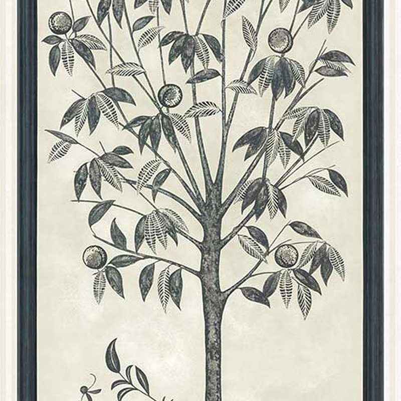 113/14043.CS Trees Of Eden/Life - Charcoal & Parchment - Cole & Son Wallcovering
