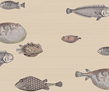 Cole and Son Acquario Taupe Wallpaper 114/16033.CS