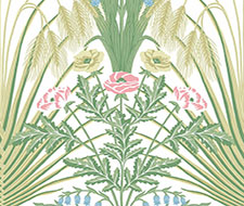 Cole and Son Bluebell Spring Green Crm Wallpaper 115/3008.cs.0