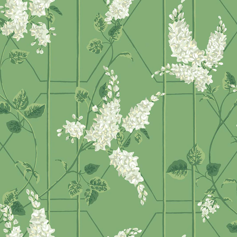 115/5016.CS Wisteria - Sage/Leaf Green - Cole & Son Wallpaper