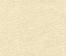 2012169.1116 Hatteras Cotton – Pearl – Lee Jofa Fabric