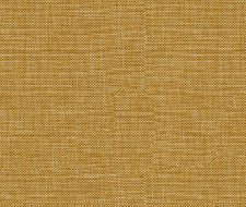 30299.666 – Brown/Silver – Kravet Basics Fabric