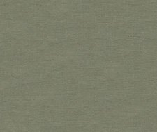 32344.11 Dublin – Dove – Kravet Basics Fabric
