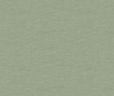 32344.30 Dublin – Leaf – Kravet Basics Fabric
