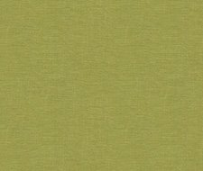 32344.3 Dublin – Meadow – Kravet Basics Fabric
