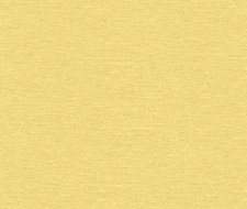 32344.40 Dublin – Corn – Kravet Basics Fabric