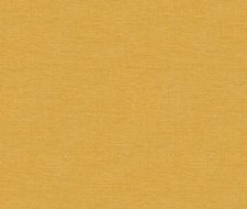 32344.4 Dublin – Harvest – Kravet Basics Fabric