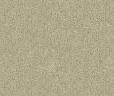 33127.1611  – 1611 – Kravet Couture Fabric