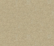 33127.161  – 161 – Kravet Couture Fabric