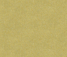 33127.23  – 23 – Kravet Couture Fabric