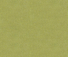 33127.323  – 323 – Kravet Couture Fabric