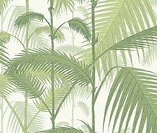 95/1001.CS Palm Jungle – Olive Gre/White – Cole & Son Wallpaper