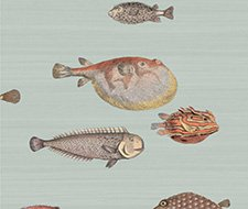 Cole and Son Acquario Pal Bl Mlt Wallpaper 97/10030.CS