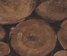 AMW10009.86 Lumberjack – Timber – Kravet Couture Wallcovering