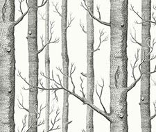F111/7026.CS Woods – Soot On Snow – Cole & Son Fabric