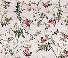 F62/1001.CS Hummingbirds Pr – Cream – Cole & Son Fabric