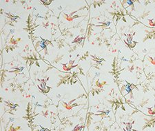 F62/1004.CS Hummingbirds Pr – Ruban – Cole & Son Fabric