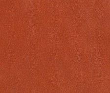 L-CAVESSON.SPICE L-Cavesson – SPICE – Kravet Couture Leather