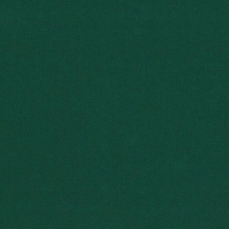 LCF66386F.RL.0 Coastal Plain - Cabana Green - Ralph Lauren Fabric