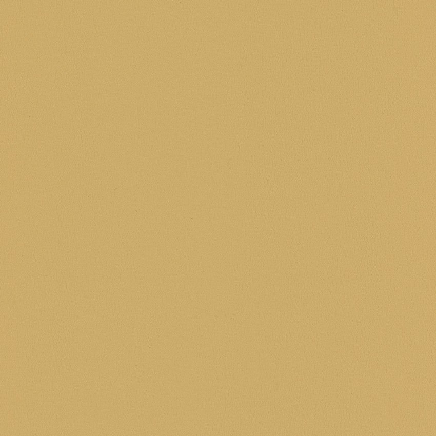 NEWT.1616 Newt - Beige - Kravet Smart Faux Leather