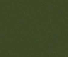 NEWT.303 Newt – Green – Kravet Smart Faux Leather