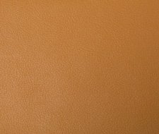 NEWT.4 Newt – 4 – Kravet Smart Faux Leather