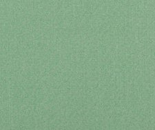 PF50420.785 Carnival Plain – Emerald – Baker Lifestyle Fabric