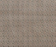 PF50424.440 Salsa Two Spot – Blush – Baker Lifestyle Fabric
