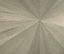 AS-3X17-S-15 Ajiro Sunburst – Polished Silver Birch Luster – Maya Romanoff Wallpaper