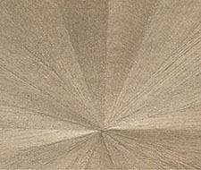 AS-3676-P-15 Ajiro Sunburst – Platinum – Maya Romanoff Wallpaper