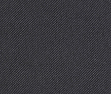 085949 Success – Graphite – Robert Allen Fabric