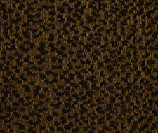 176317 Big Cat – Hunter – Robert Allen Fabric