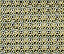 221783 Color Palettes – Zest – Robert Allen Fabric