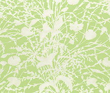 GW 000316623 Wildflower – Grasshopper – Scalamandre Fabric