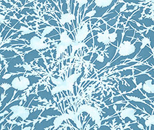 GW 000516623 Wildflower – Blueprint – Scalamandre Fabric