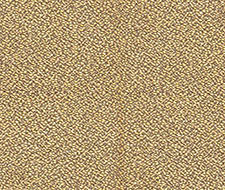 H0 00040513 Mix – Paille – Scalamandre Fabric