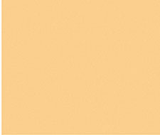 WRK0031PLAI Plain Mini Chevron – Butterscotch – Scalamandre Wallpaper
