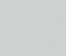 WSB00210515 Adam Non-Woven – Cool Light Grey – Scalamandre Wallpaper